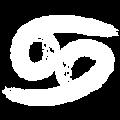 zodiac-icon4